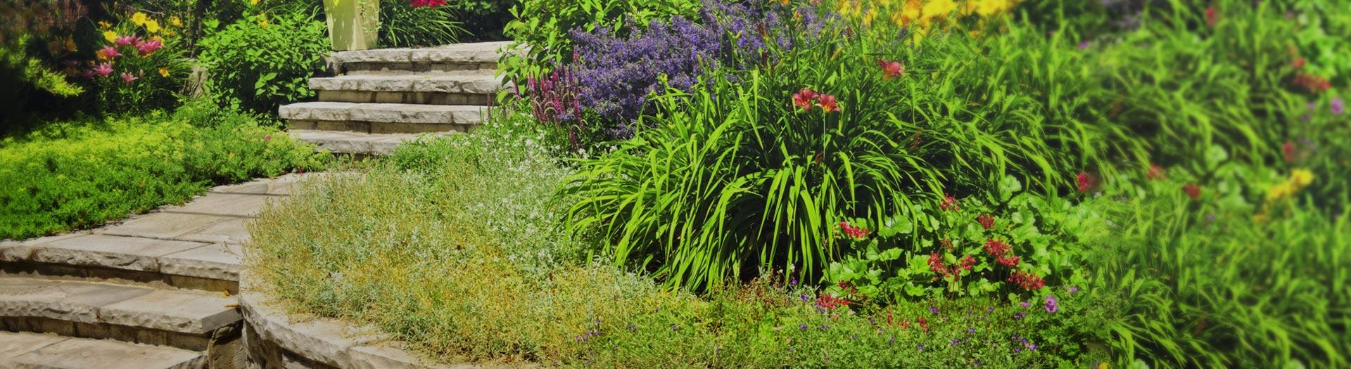 Projektowanie<br>i zakładanie ogrodów
